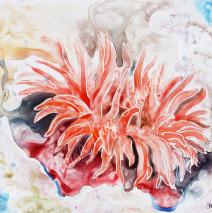 Sea Flower