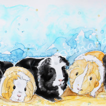 Nine Little Guinea Pigs